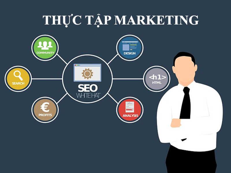 marketing_optimized